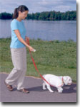 Walking on a loose leash