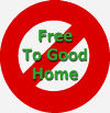 No Free To Good Home